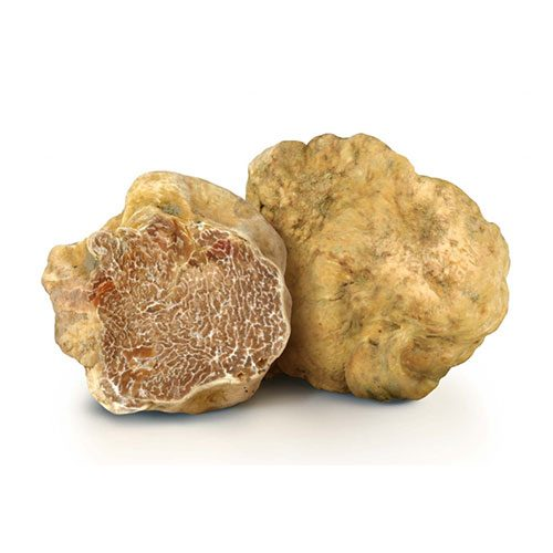 White Truffles: Fresh 50g